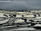 02-fot-marek-pindral